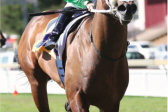 Fayd'Herbe chases his 4th Winter Derby win