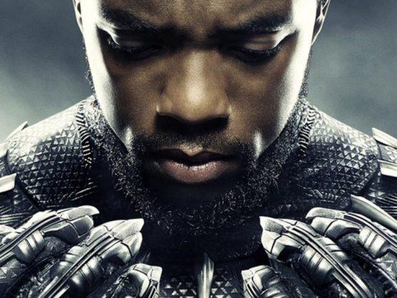 Take Black Panther home