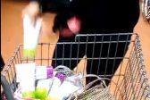 VIDEO: Woman stashes trolley load of groceries in pants