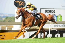 Two Vaal meetings moved to Turffontein