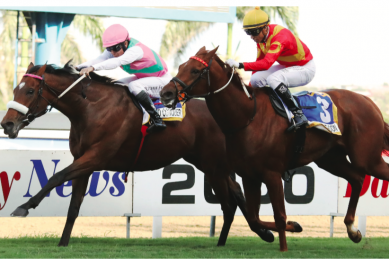 Snaith runners dominate the betting in July day features