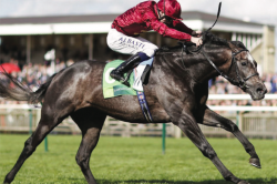 Roaring Lion to seek revenge in the Coral-Eclipse Stakes
