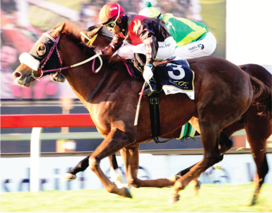 TOP WEIGHT: Coral Fever has the biggest burden to carry in the Vodacom Durban July but Muzi Yeni says he wouldn't be on anything else.