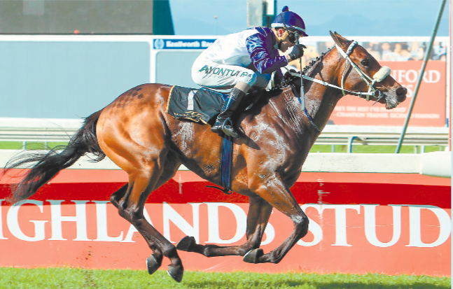 ONE TO WATCH. One World streaks to a start-to-finish victory in the Listed Highlands Stud Langerman at Kenil- worth at the weekend – and marks himself down as potentially something special. See Page 8. Picture: Wayne Marks