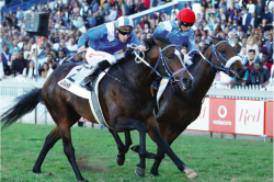 De Kock to saddle five at Meydan