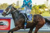 Highveld Hawks victorious again in jockeys' Rider Cup