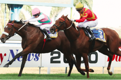 Kiplingcotes Derby falls to virus – but Greyville holds aloft torch for racing world