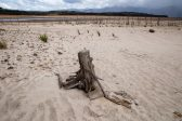 Was the Cape water shortage caused by farmers, city dwellers or drought?