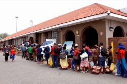 DA says Beitbridge border post is in 'meltdown' following Zim crisis
