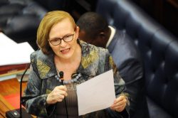 Zille: Malema and Mandela should be reported for apartheid, colonialism comments