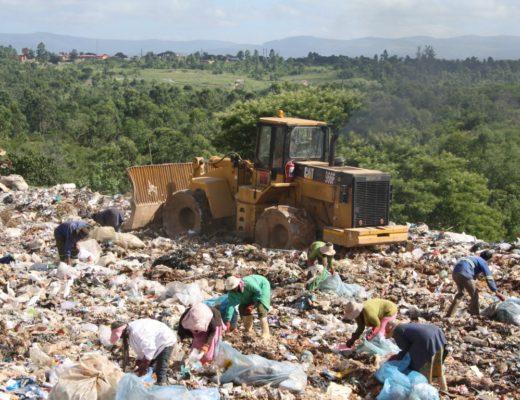 Image: Letaba Herald