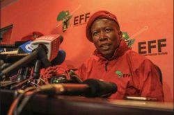 Malema wants all of us to speak Swahili