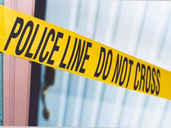Crime stats: Murder motives revealed