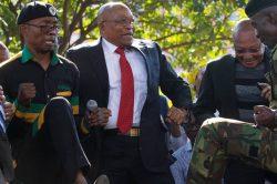Taxpayers shouldn't foot the bill of Zuma's album