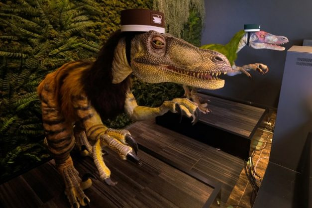 A pair of robot dinosaurs wearing bellboy hats welcome guests from the front desk at the Henn-na Hotel in Urayasu, suburban Tokyo on August 31, 2018.  The reception at the Henn-na Hotel east of Tokyo is eeriely quiet until customers near the robot dinosaurs manning front desk. Their sensors detect motion and they bellow: