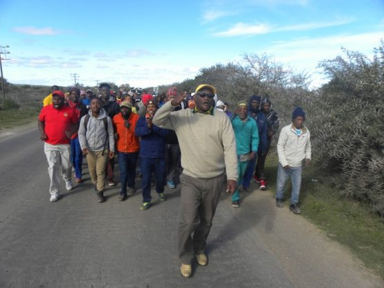 Farm workers in Addo and Kirkwood went on strike for a day on Tuesday, demanding farmers pay them the minimum wage of R20 an hour. Photo: Joseph Chirume