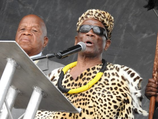 Acting king of Sekhukhune, Kenneth Sekhukhune lll, says expropriating land without compensation would swell the economy and bring change to the people. Here he is speaking during Sekhukhune Day celebrations in Mohlaletsi outside Jane Furse, Limpopo, on Saturday. Picture: Alex Matlala