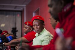 Malema, Shivambu question payment made to Pauli Van Wyk's bank account