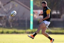 Springboks don't want to be 'selfish' with overseas-based stars