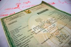 Gauteng learner and driving licence bookings to move exclusively online