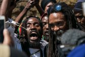 Dagga ruling is a blow against decades of racism