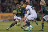 Newlands rejoices as Notshe gets his big Bok break