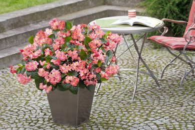 How to get your patio ready for summer