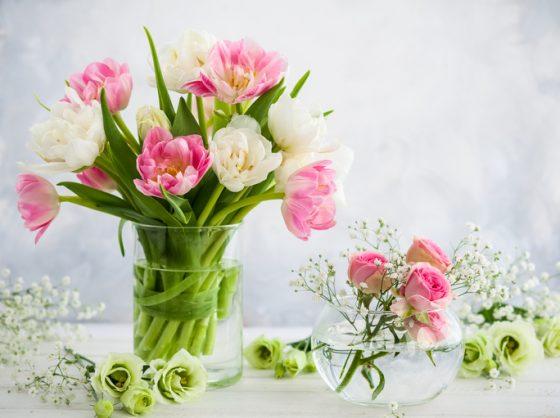 Flower show to bloom in Joburg