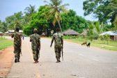 Tanzanian 'criminals' seeking base in Mozambique: police