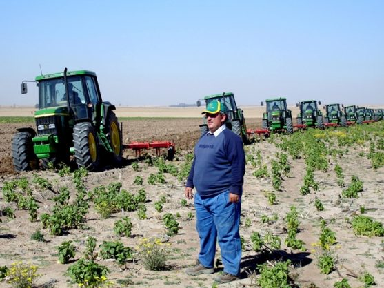 A farmer looks at his new tractors with pride.