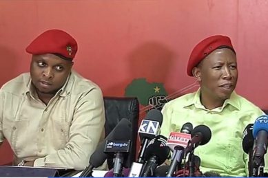 Malema is 'very excited' about De Lille's new party
