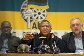 Mbalula tells DA: The Zuma years were good for you