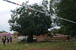 Body hangs in tree for days before being discovered