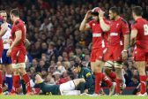 The Springboks and the (other) Cardiff curse