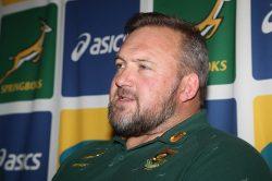 Springboks will make 'brave calls' against Pumas