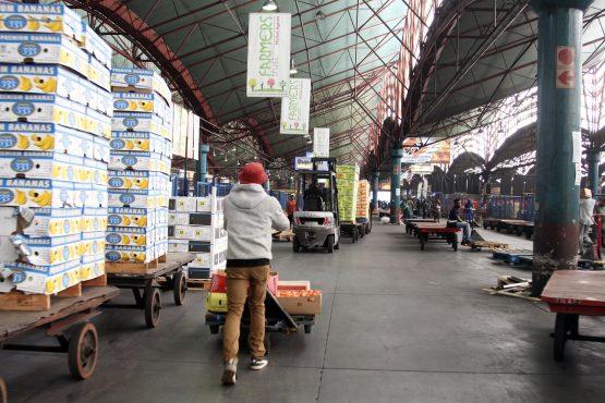 DA Gauteng calls on govt to assist farmers after Tshwane Market closure