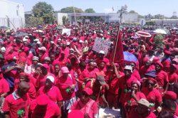 Thousands of EFF marchers demand jobs in Tshwane