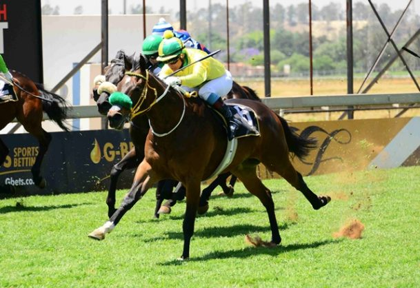 PIERE'S PICK. Piere Strydom makes Oravar, who runs in Race 6 at Turffontein today, a banker in all bets. Picture: JC Photographics