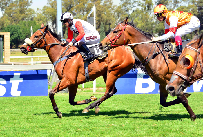 Queen's Plate a royal treat