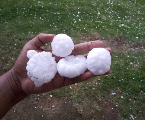 The size of the hailstones that fell in eSwatini. Images: eSwatini Daily News