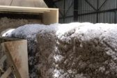 Government-funded programme unlocks R72m cotton ginnery investment