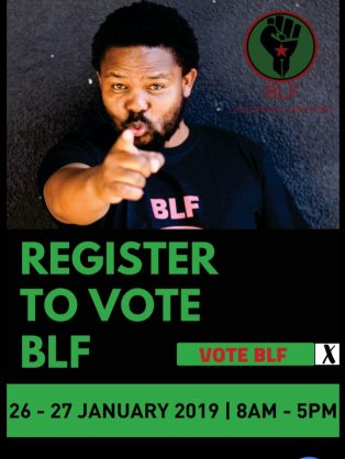 BLF promises all unemployed R5K a month, along with jobs for everyone