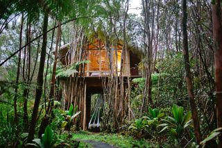 Sleep among dinosaurs in these Airbnbs around the world
