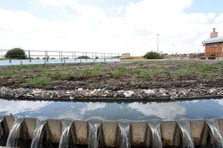 WATCH: Parys's toxic water a slow, but sure death sentence