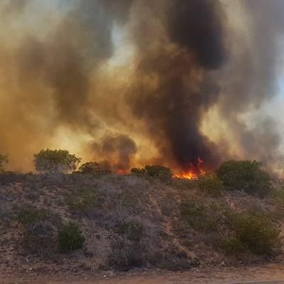 A large vegetation fire is raging in Hartenbos Heuwels.