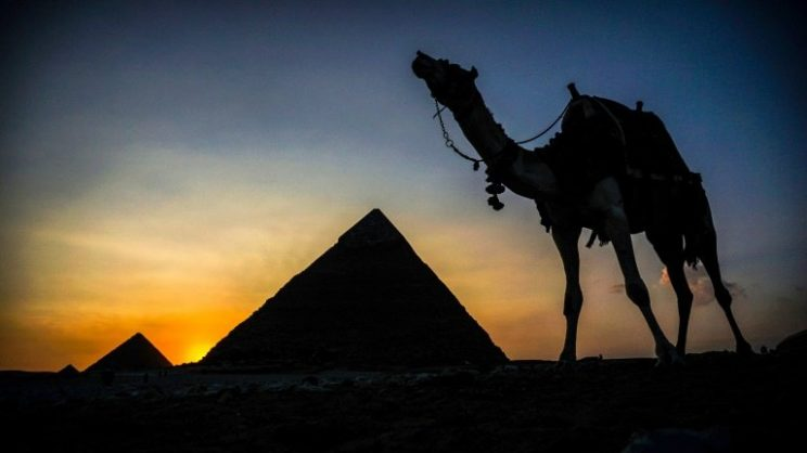 A camel walks past the pyramid of Khafre (also known as Chephren) at the Giza pyramids necropolis on the southwestern outskirts of the Egyptian capital Cairo . AFP/File/Mohamed el-Shahed