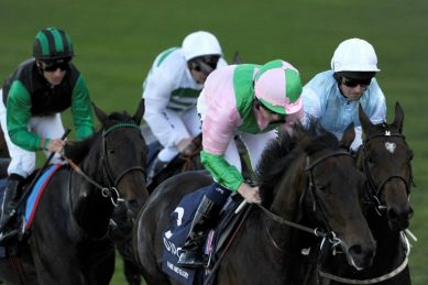 British horse racing to resume after equine flu outbreak