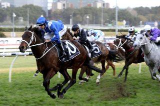Life begins at 30 as wonder mare Winx keeps on winning