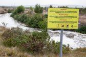 Is Zandvliet poisoning Capetonians?