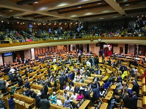 The National Assembly. FILE PHOTO: Chantall Presence / ANA